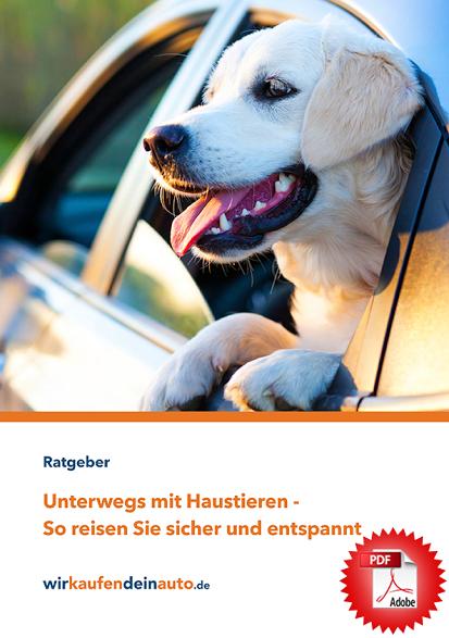 Reiseratgeber für Reisen mit Hund
